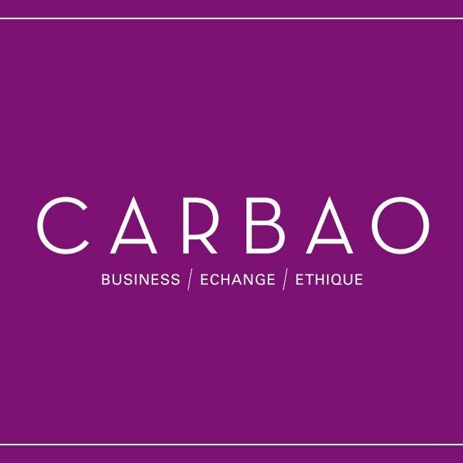 carbao club affaires your little community manager freelance lyon